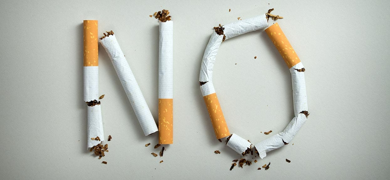 Cigarette Buts are poisonous to dogs